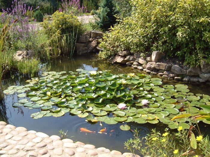 aquaPLAN PVC Pond Liner 0.5mm