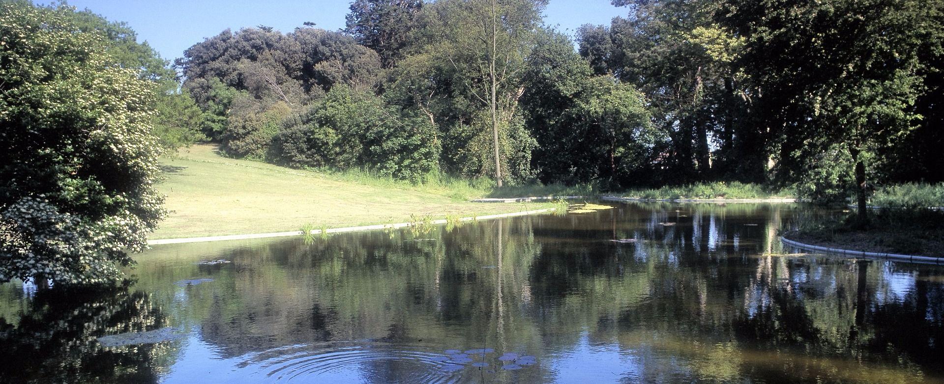 Lake Liners